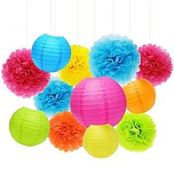 APLANET Set of 20 Assorted Rainbow Color Paper Pom Poms and