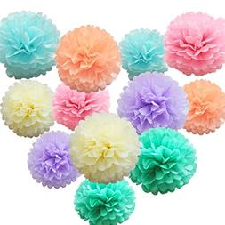 iShyan 12 Pcs Assorted Rainbow Colors Tissue Paper Pom Poms