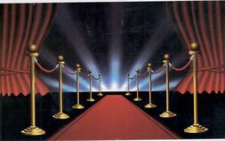 HOLLYWOOD RED CARPET photo backdrop BIRTHDAY party decor Sce