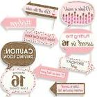 Funny Sweet 16 - 16th Birthday Party Photo Booth Props Kit -