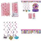Superhero Girl Birthday Decorations Party Supplies Pack Stra