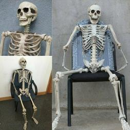 Poseable Full Life Size Human Skeleton Prop Halloween Party